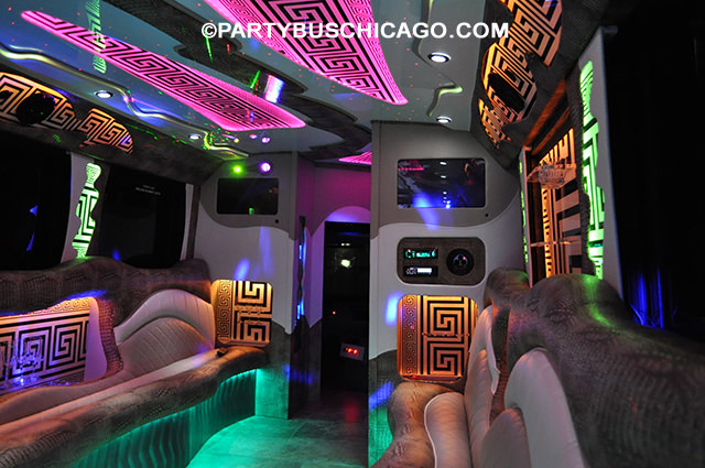 34 Passenger Fashion Bus